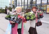 """Хиляди любители на градинарството идват на """"Цветна есен"""", която е една от най-красивите изложби на Панаира.  Снимка Международен панаир - Пловдив"""