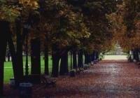 Алеите на столичния парк ще бъдат изцяло осветени от 15 ноември. Снимка begach.com
