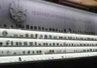 FIDEM организира международен конгрес на всеки две години. Снимка fidem-medals.org