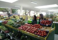 Повишение на цените при повечето плодове и зеленчуци отчита статистиката. Снимка Aspekti.info (архив)