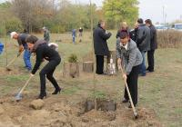"""Кметът на район """"Западен"""" Десислава Желязкова (вдясно) първа засади дърво. Снимка Район """"Западен"""""""