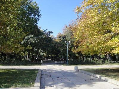 Обновяването на зелената система е сред приоритетите на общинската власт, потвърди Иван Тотев.  Снимка Aspekti.info (архив)