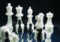 Турнирът е организиран по швейцарската система в седем кръга по десет минути за всеки участник.  <p>Снимка chessbgnet.org (архив)</p>