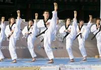 В демонстрацията ще участват двадесет от 90-те най-добри таекуондисти в целия свят.