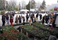 """""""Цветна пролет"""" е една от най-посещаваните изложби в Дните на семейството, свободното време, хобито и модата. Снимка Международен панаир - Пловдив"""