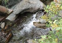 Водата е живот, убедени са малките природолюбители. Снимка ©Aspekti.info (архив)