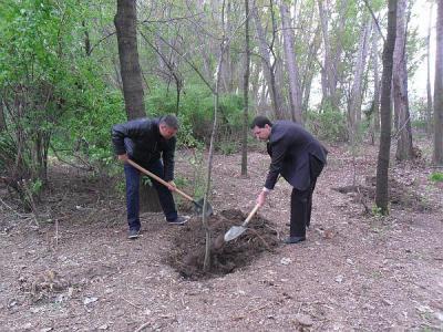 Кметът показа как се засажда дърво.  Снимка Община Пловдив