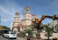 Новозасадените палми са дарени от частна фирма. Снимка Община Пловдив