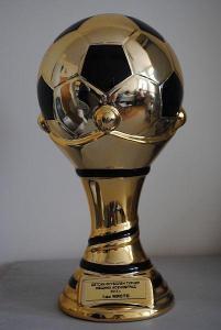 Младите футболисти ще водят спортсменска битка за купата.  Снимка Община Асеновград