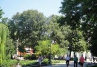 Централният пловдивски парк ще бъде преобразен. Снимка © Aspekti.info