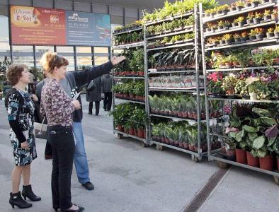 """Посетители окупираха """"Цветна есен"""" още в първите часове след откриването. Изложението продължава от 23 до 27 октомври 2013 г. в Международен панаир Пловдив."""