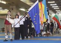 По традиция киноложките изложби и финалите за Световната купа, които се провеждат в Международен панаир Пловдив, започват с  парад на участниците. Тази година проявите  стартират в 11 часа на 26 октомври.