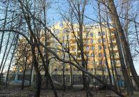 """Много от дърветата в този район са силно наклонени и при всеки повей на по-силен вятър може да паднат върху някого. Снимка ОП """"Градини и паркове"""""""
