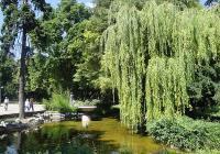 Всички водни площи на територията на парка ще бъдат цялостно обновени. Снимка © Aspekti.info (архив)