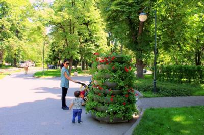 "Снимка: ОП ""Градини и пракове"""