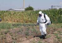 Експериментаторите твърдят, че накрая унищожават всички растения, третирани с препаратите, както и остатъците от самите химикали.