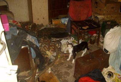 """Служителите на """"Чистота"""" са се натъкнали на ужасна мръсотия и мизерия в общинските жилища.  Снимка Район """"Западен"""""""