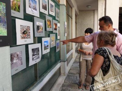 Фототворбите бяха подредени в двора на Регионалния исторически музей.  Снимка Община Хасково